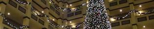 Navidad en el Hotel Gold River: El Hotel Gold River de PortAventura se transforma para albergar mágicas celebraciones en la fiesta de Navidad, con una decoración llena de luces, árboles de Navidad y guirnaldas.