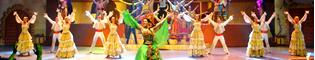 ¡Hola PortAventura!: Un viajero se pierde y llega al mundo de PortAventura con música, acrobacias y baile.