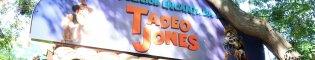 La Expedición Encantada de Tadeo Jones: En este recorrido a pié para toda la familia, tendrás que encontrar a Tadeo Jones con la ayuda de los exploradores que te encontrarás por este camino encantado.