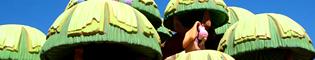 El Árbol Mágico: El árbol mágico de la plaza central de SésamoAventura te invita a subir y descubrir sus secretos. Las mejores vistas de SésamoAventura en PortAventura Park.