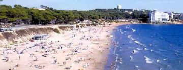 Apertura de la Zona de Playa