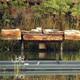 Inocentada: El lago de PortAventura se vacía