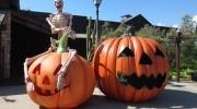 Del 27 de septiembre al 16 de noviembre del 2014, disfruta de la época más terroríficamente divertida