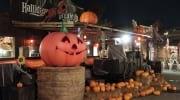 PortAventura World celebra la festividad de Halloween del 23 de septiembre al 19 de noviembre del 2017