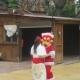 Animación de Calle de Navidad
