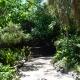 Makamanu Garden